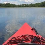 Blick aus dem Kanu auf die Mueritz