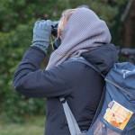 Vogelbeobachtung im Naturpark Westhavelland
